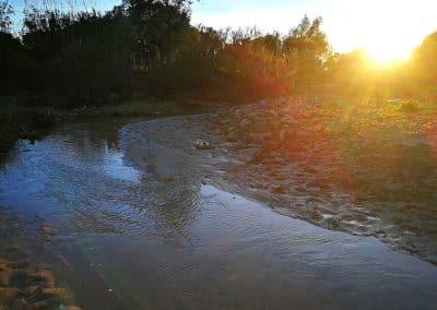 Arroyo-San-Ambrosio