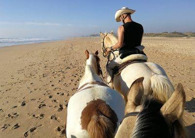 Jacky-gibt-Chakiro-Sicherheit-beim-ersten-Strandausflug